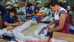 Dịch vụ cung ứng và cho thuê lao động thời vụ Tphcm